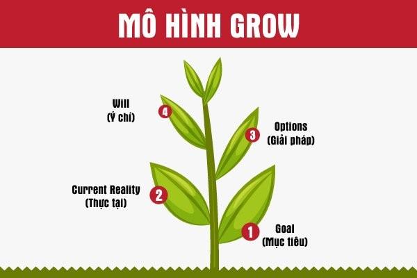 Cách triển khai GROW